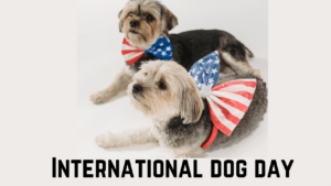 Read more about the article International Dog Day   Celebrate National Dog Day