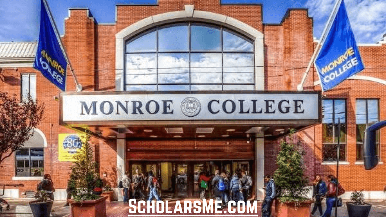 Read more about the article Monroe College | Degrees and Programs